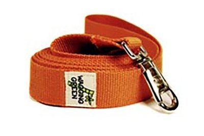 Eco Friendly Bamboo Double Layer Dog Leash - Falling Leaves