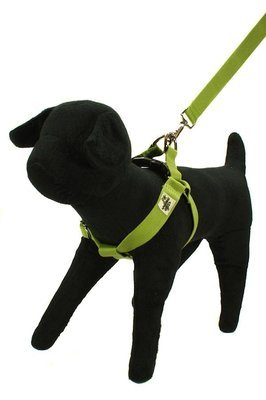 Eco Friendly Bamboo Double Layer Step-In Dog Harness - Bamboo Zen
