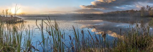 Warmth, Skinner Marsh, Shallow Lake, Ontario, Canada