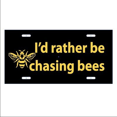 CHASING BEES - LICENSE PLATE