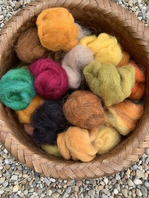 Alpaca Wool Roving Sampler - Autumn Colors