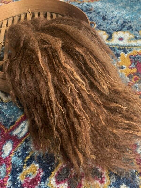 Suri Alpaca Locks, 11 Inches, Medium Fawn, Margo