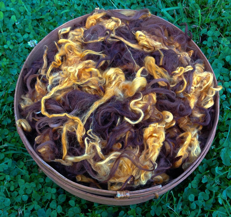 Suri Alpaca Fiber - Citrus, Medium Brown