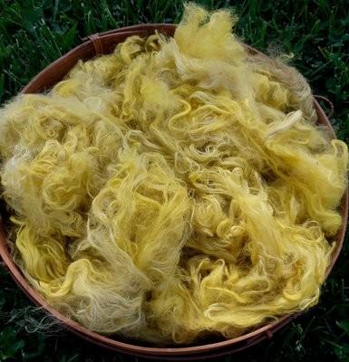 Hand-Dyed Suri Alpaca Fiber, 6 Inches, Daisy