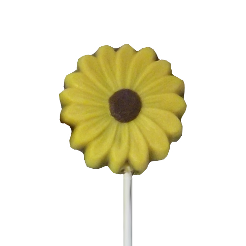 Chocolate Lollipops - Pollylops® - Black Eyed Susan