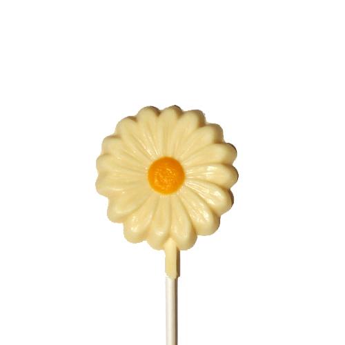 Chocolate Lollipops (Pollylops® Single Daisy)