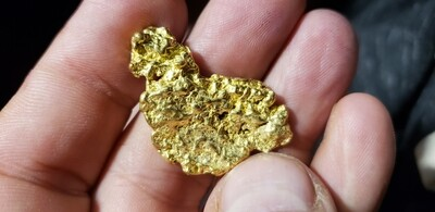 14.23 Gram Yukon gold nugget for sale