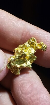 10.94 Gram Yukon gold nugget for sale