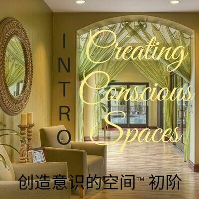 Creating Conscious Spaces INTRO 创造意识的空间™ 初阶