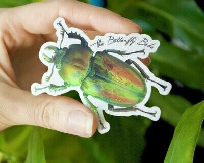 Rainbow Stag Beetle Metallic Sticker