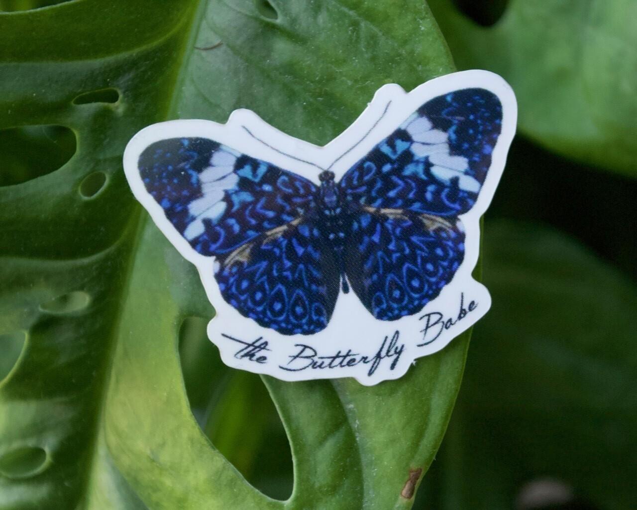 Blue Cracker Butterfly Sticker