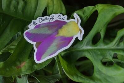 Rosy Maple Moth Sticker