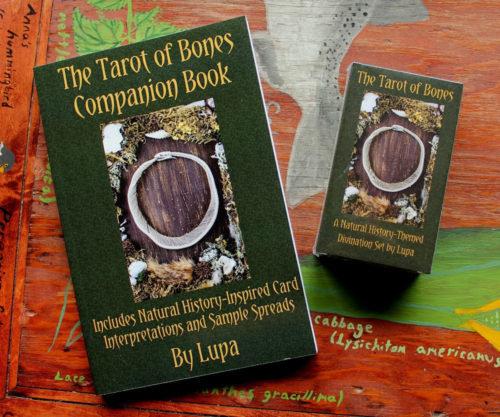 Tarot of Bones companion Book by Lupa
