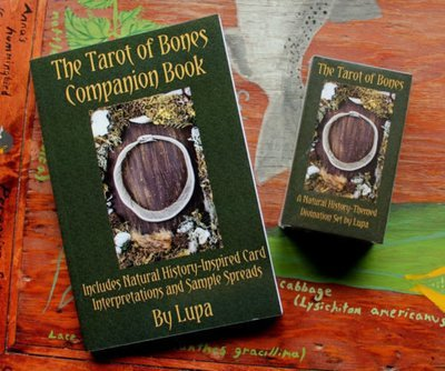 Tarot of Bones companion Book by Lupa