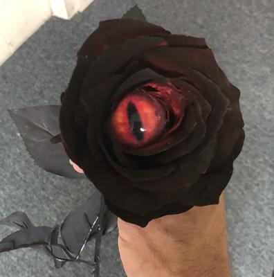 Evil Eye Rose