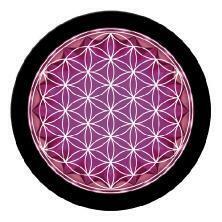 Puce cristallium Fleur de vie