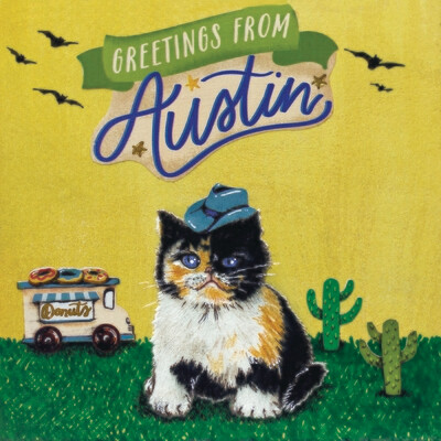 Lil Austin Kitten