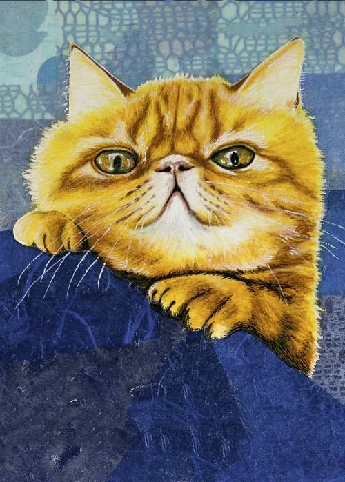 Ginger kitty 5 x 7