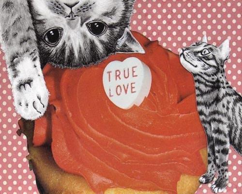True love cats 8x10