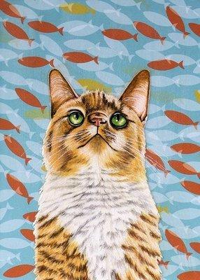 Cat fish tank 5 x 7