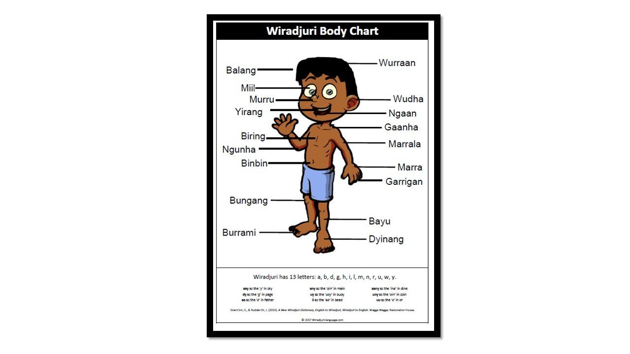 Chart A2 Wiradjuri Body