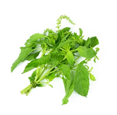 Hot Basil - 3oz