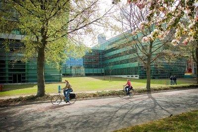 Linguistics and Communication Sciences (Research Master) (Radboud - Yüksek Lisans)