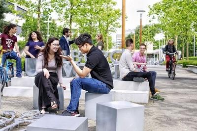 Organizing for Global Social Challenges (Tilburg - Yüksek Lisans)