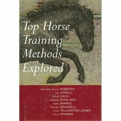 Top Horse Training Methods Explored