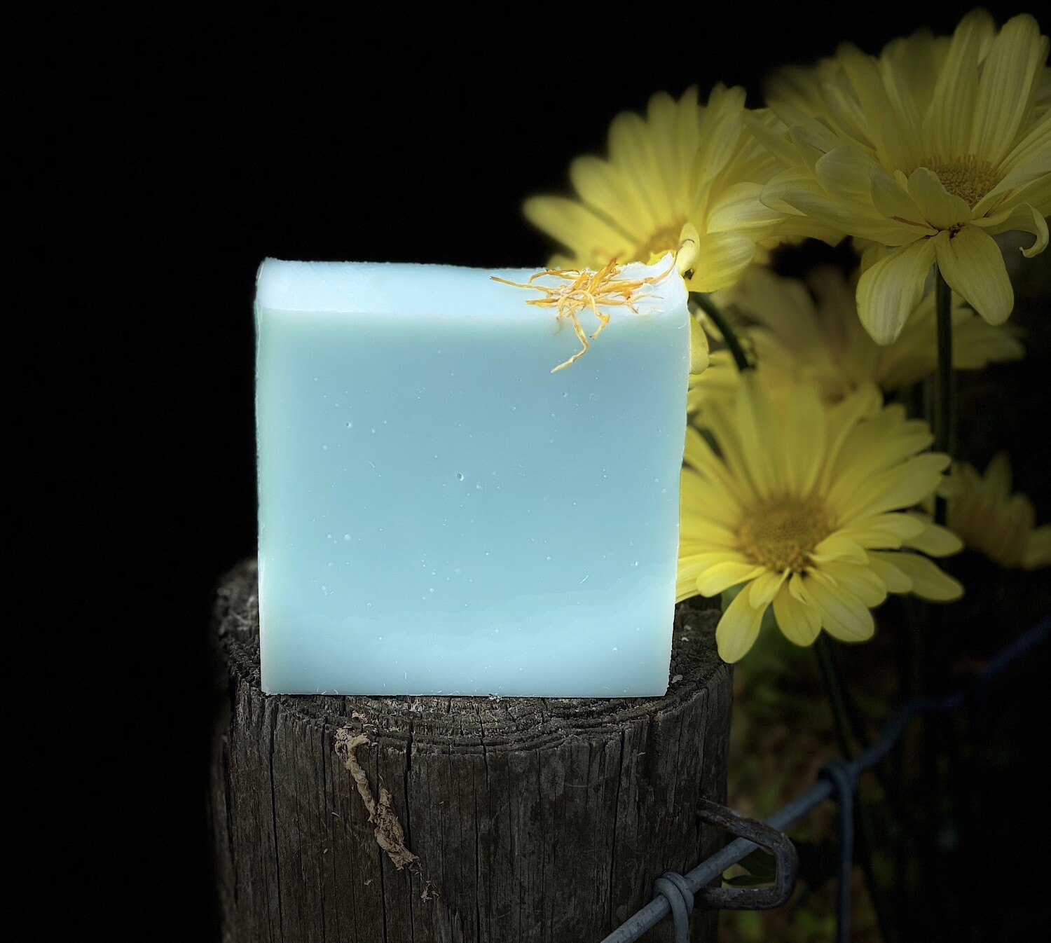 """""""Blue Daisy"""" Scented in Daisy and Florals"""