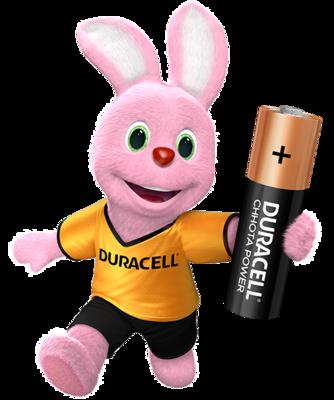 Duracell Chhota Power AA, 1 Batteries, 1.5V Alkaline