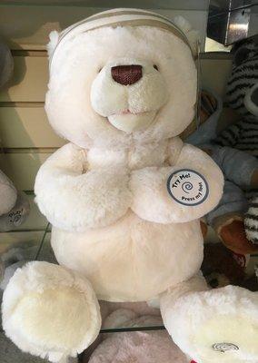 Bedtime Prayer Teddy Bear.  Interactive.