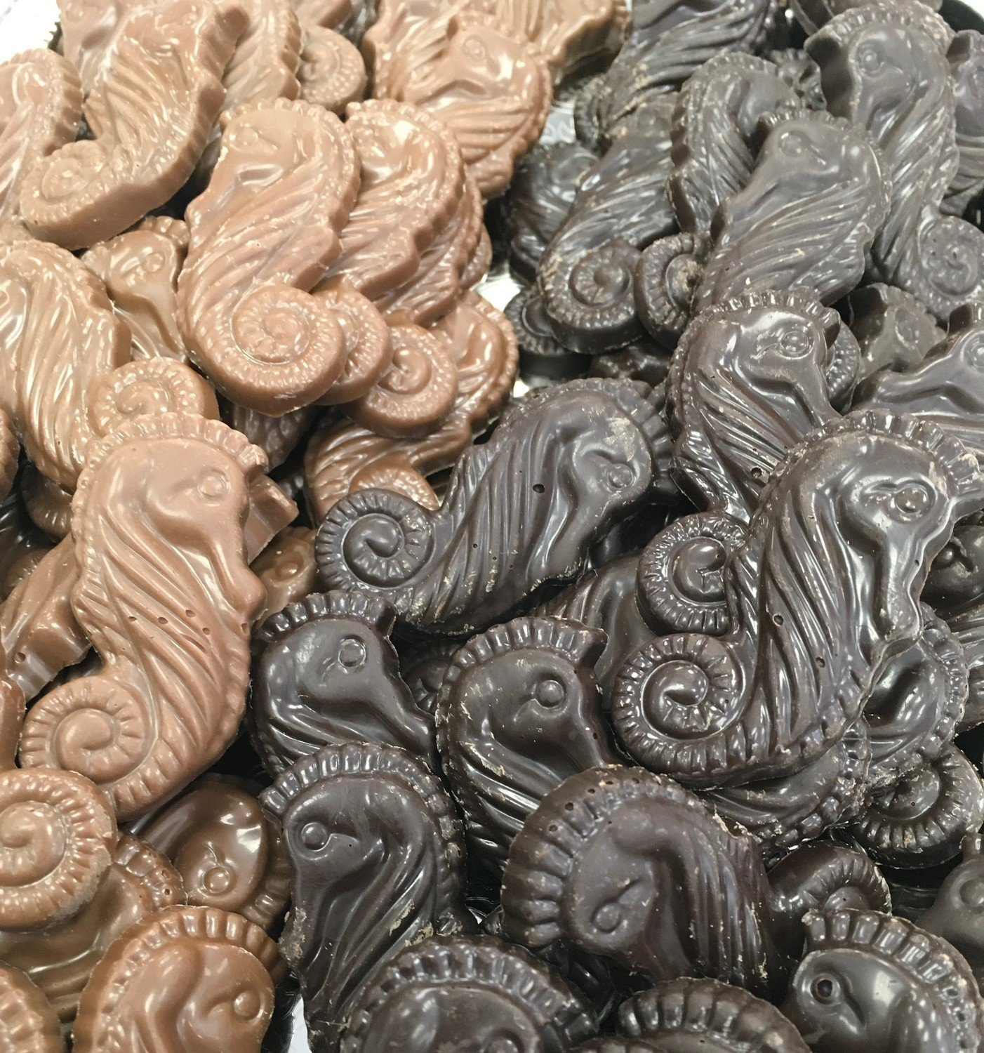 Homemade Chocolate Seahorses.  Peanut and Gluten Free. 60 to a Lb.