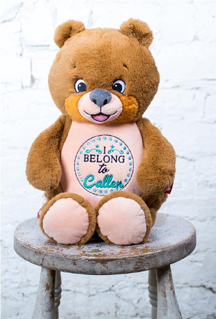 Custom Embroidered Bear Cubby - Signature Bear