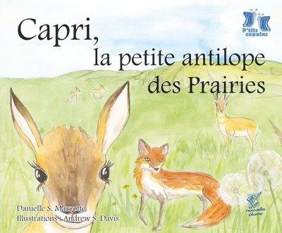 Capri, la petite antilope des Prairies