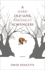 Hard Old Love Amongst Scavengers, A: A Novel
