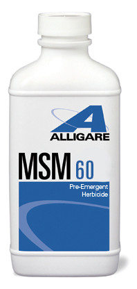 MSM 60 -16oz or 8oz