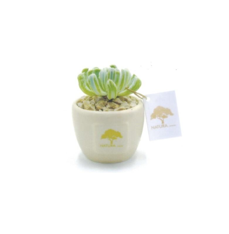 Vaso tondo piccolo soft touch Pz. 1