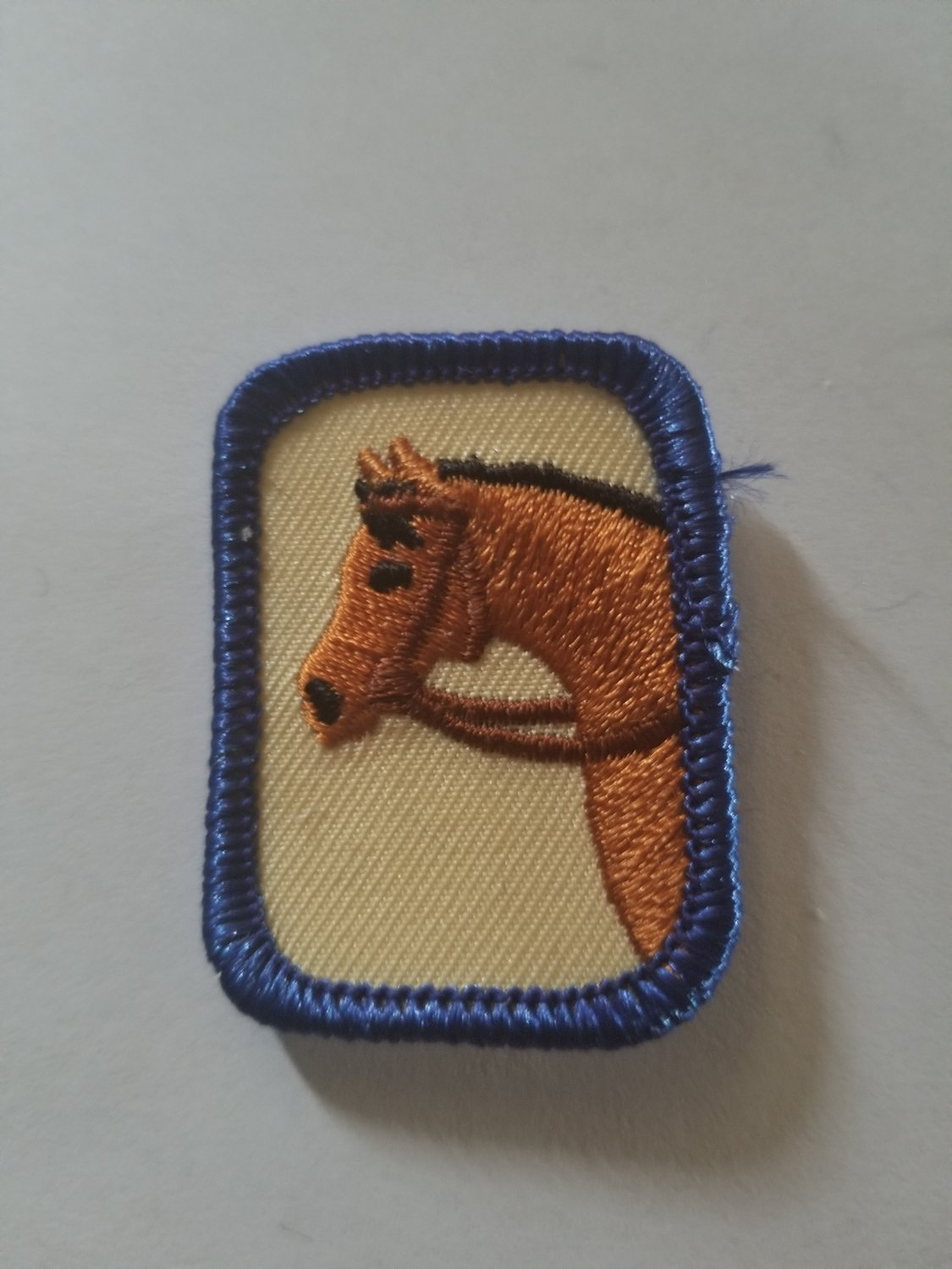 Equestrian Rectangle