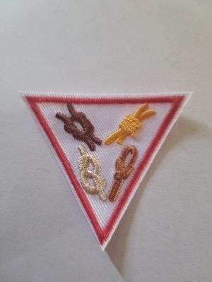 Knots Triangle