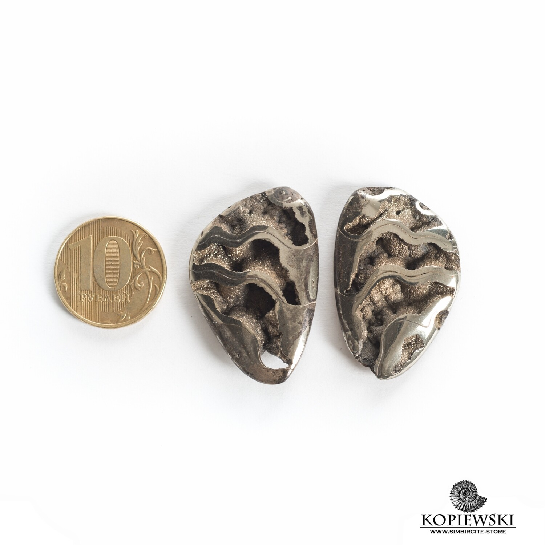Pair Ammonite Simbircite