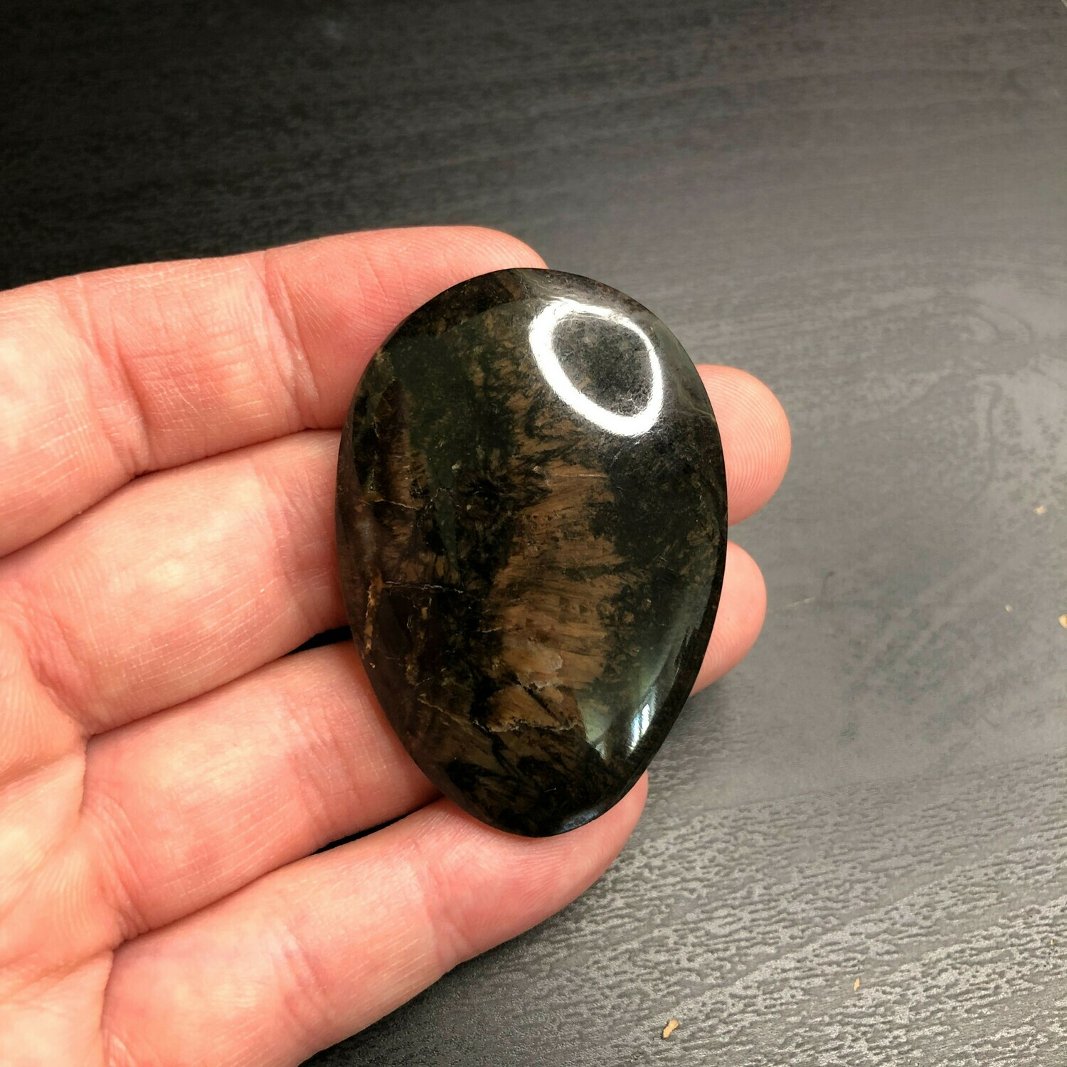 Petrified wood cabochon