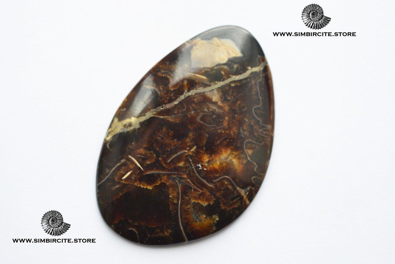 Аммонитовый симбирцит 68*46*3 мм