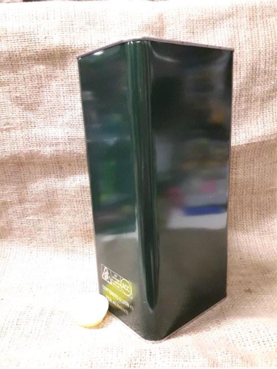 Lattina 5 lt. con tappo (confezione da 10 pz) 148x120x315h