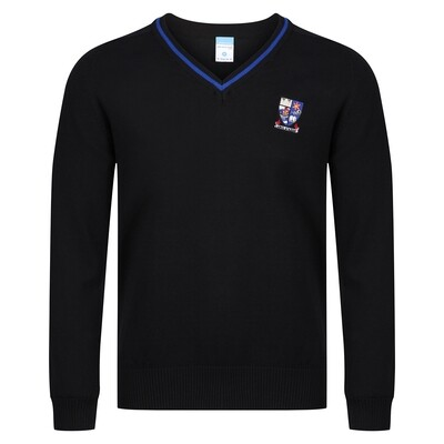 Largs Academy Knitted V-neck with stripe