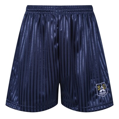 St Ninian's Primary PE Short
