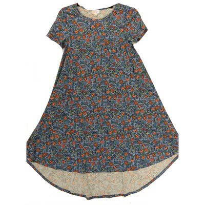 LuLaRoe CARLY XX-Small XXS Floral Yellow Blue Pink Swing Dress fits Women 00-0