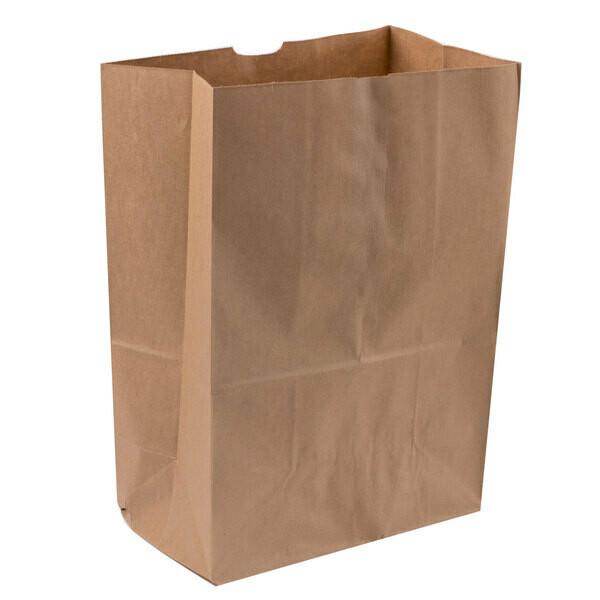 Paper Bags Kraft  Large Take Out  320x155x392.5mm (50)