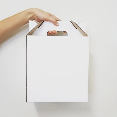 Box Corrugated Picnic White Large (each)