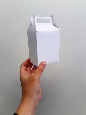 Box Wedding Treat White (Qty 50)
